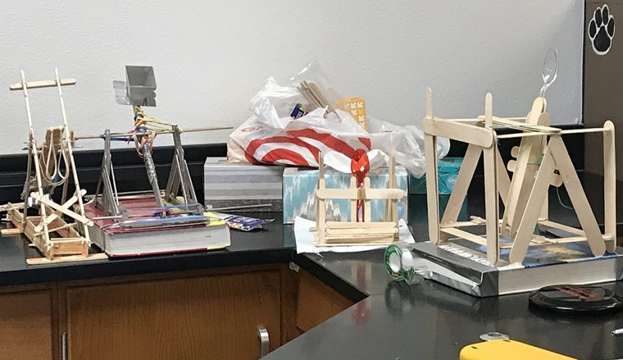 Physics Catapults into New Year