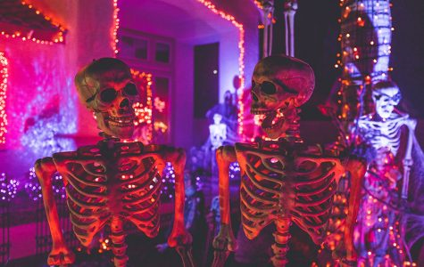 Halloween plans for those who have no boos