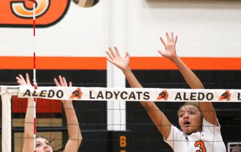 Ladycats advance in playoffs