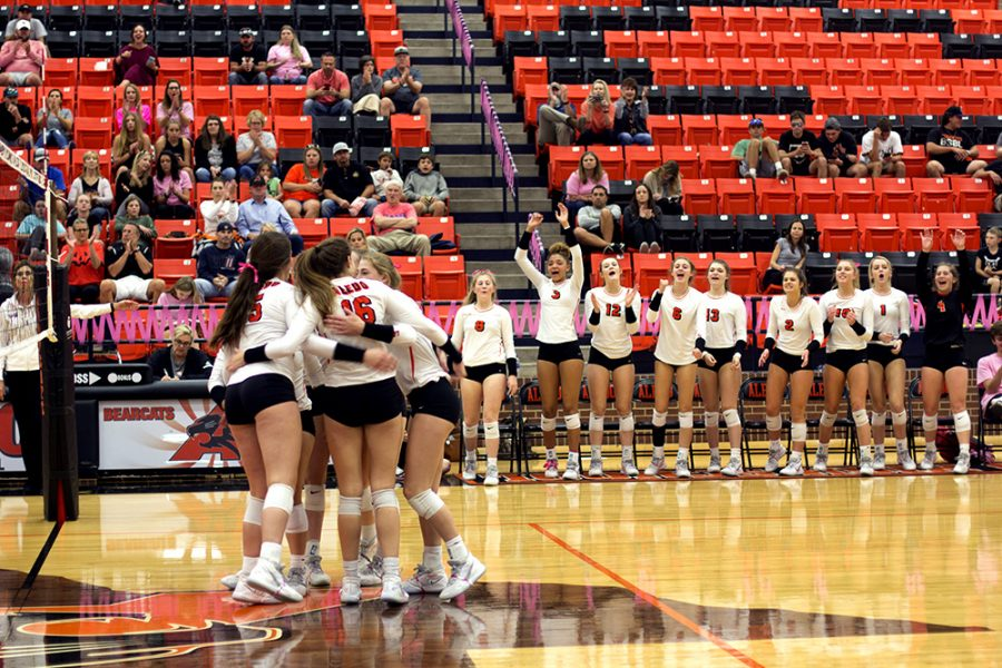 Volleyball+secures+area+championship