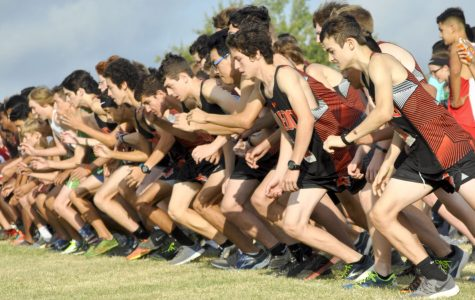 Recapping the Cross Country Season