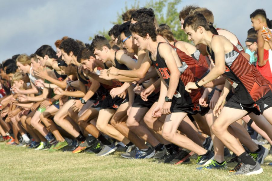 Recapping+the+cross+country+season