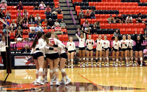 Volleyball secures area championship